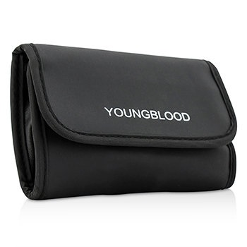 Youngblood Professional Mini 6pc Brush Set