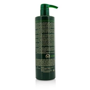 Rene Furterer Absolue Keratine Restoring Ritual Renewal Shampoo (Extremely Damaged, Brittle Hair)