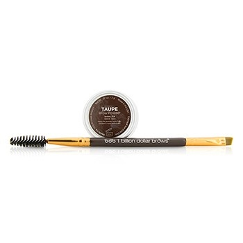 Billion Dollar Brows 60 Seconds To Beautiful Brows Kit (1x Brow Powder, 1x Dual Ended Brow Brush) - Taupe
