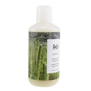 R+Co Cactus Texturizing Shampoo
