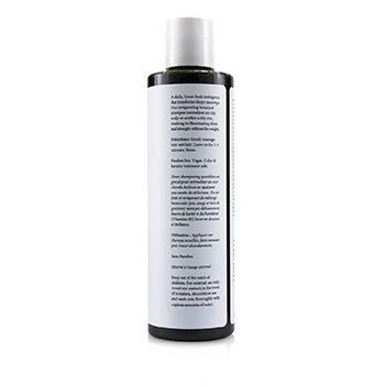 Philip B Scent of Santa Fe Shampoo (Balancing Soothing - All Hair Types)