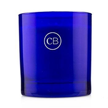 Capri Blue Signature Candle - Modern Mint
