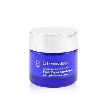 Dr Dennis Gross B3 Adaptive SuperFoods Stress Repair Face Cream