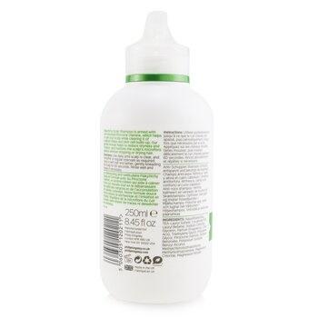 Philip Kingsley Flaky/ Itchy Scalp Anti-Dandruff Shampoo