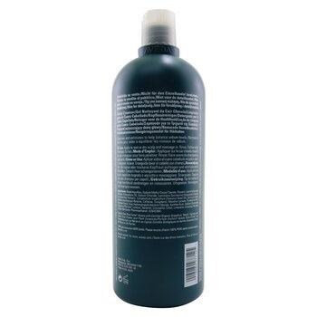 Aveda Pramasana Purifying Scalp Cleanser (Salon Product)